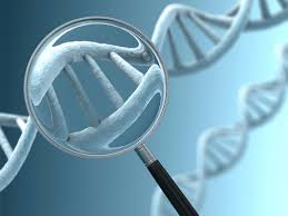 Genetic Technologies Improves Diagnosis & Disease Management At Low Cost